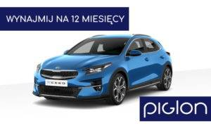 Piglon Post Kia Xceed